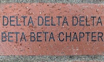 Example brick.